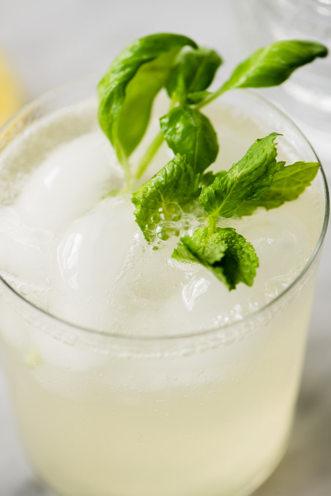 Sparking mint and basil lemonade in a glass with sprigs of fresh herbs for garnish.