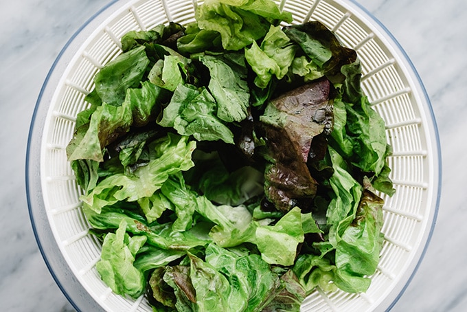 Chopped butter lettuce in a salad spinner.