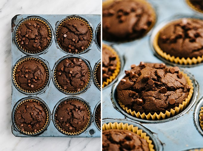 Overhead and side view of chocolate pumpkin muffins fresh from the oven in a muffin tin.